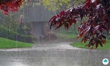 باران در کدام استانها کم بارید؟