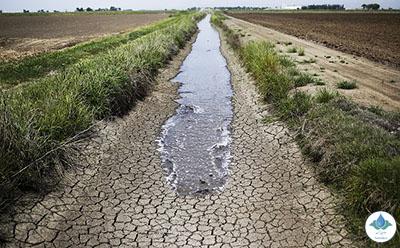 تولید هر محصول چقدر آب میخورد؟