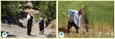 کلید کشاورزان برای حل یک بحران