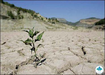 خشکسالی همچنان ادامه دارد